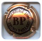 P01G1 PAILLARD Bruno