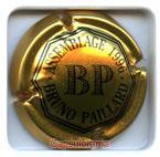 P01G2 PAILLARD Bruno