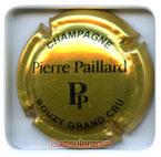 P01H1 PAILLARD Pierre