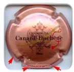 C05C3_ CANARD DUCHENE