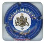 D19D2_ DELAMOTTE
