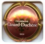 C05B2 CANARD DUCHENE