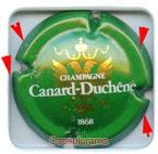 C04H3. CANARD DUCHENE