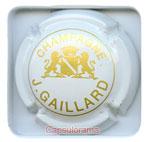 G02C52-10 GAILLARD Jérome