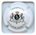 D01F1 DAMONT Antoine