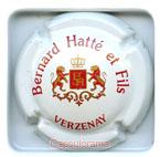 H02E5 HATTE Bernard